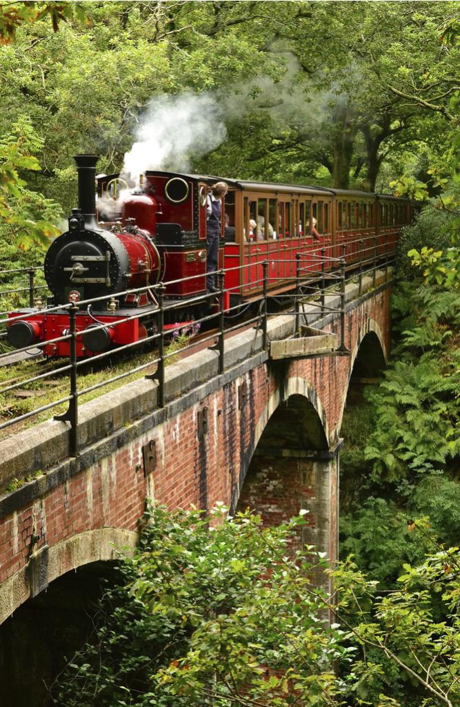 02-ferrocarril-gales-viajes-talyllyn-lugares-cuento-sleepydays-andrew-gallon-667x1024