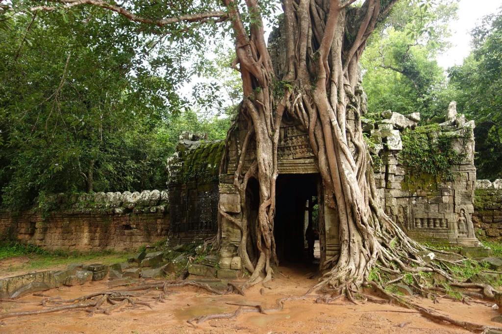 03-ta-som-templo-camboya-benjamin-jakabek-viajes-lugares-cuento-sleepydays-1024x682