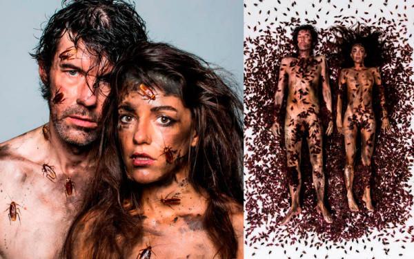 Desnudo por cucarachas de Steffan Sagmeister