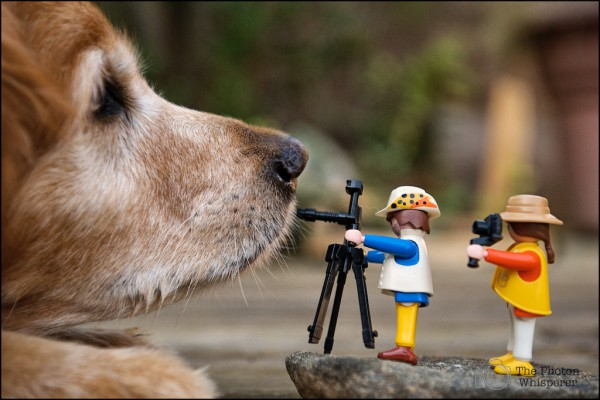 clicks-playmobil-proyectos