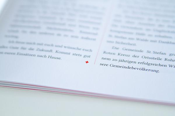 erli-grunzweil-cruz-roja-03