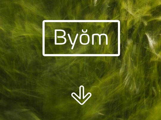 tipografia-gratis-descargar-byom