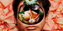 collage-mejores-artistas-inspiración.jpg