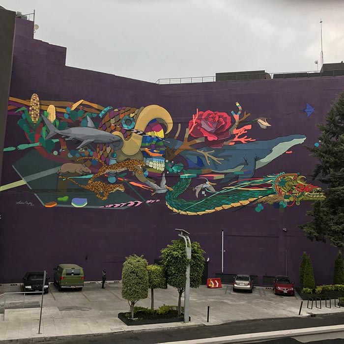 mejores artistas urbanos de México Seher arte callejero